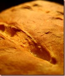 whitebread4