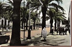 Casablanca1950s