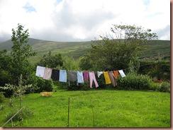 clothesline5