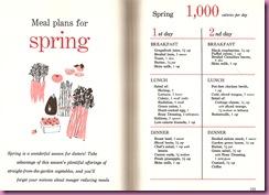 spring 1000 calorie plan