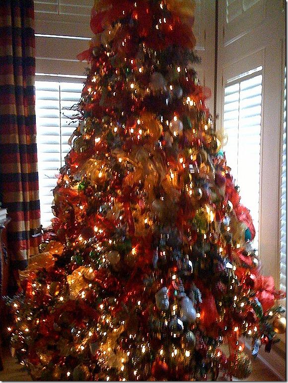 Lisa  tree