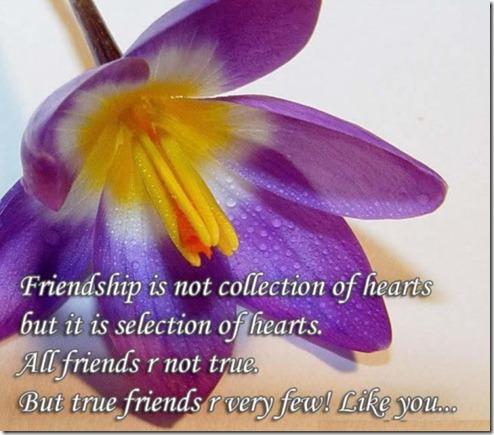 H-Friendship