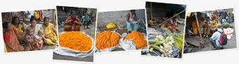"""Просмотр альбома """"Цветочный рынок в Калькутте"""""""