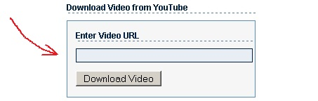 youtube download 02 Cum descarci fisiere video de pe Youtube