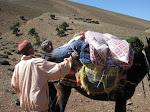 http://lh5.ggpht.com/_Q-b3D5rJSGo/TNb1YIMGaOI/AAAAAAAAEuA/Ndj6tKQ6Znc/MarocBest%20%28414%29.JPG