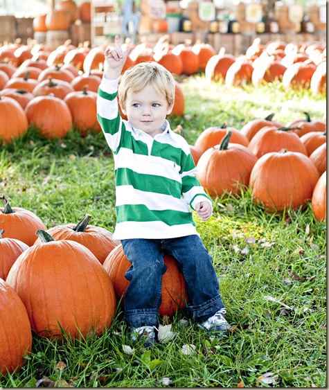 Crawford Pumpkin Patch1