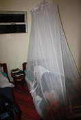 Kirsten under her mosquito net in the Red Chilli
