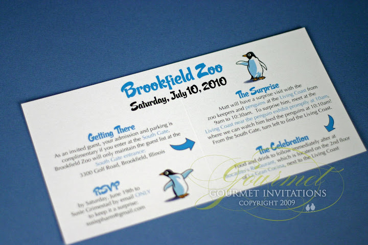 Susie Is Throwing A Surprise Party For Matt At The Brookfield Zoo That He Will Get To Do Feeding Penguin House