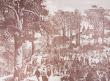 Zielone Świątki w 1874 r.
