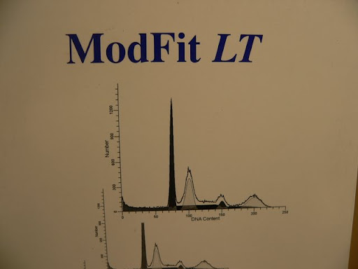 cell cycle analysis. Veritas ModFit LT Cell Cycle Analysis Software 1995/6 | eBay