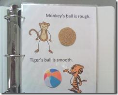 monkey book opposites