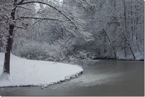 snowyriverbank