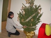 el arbol de Navidad de Lourdes, intento I