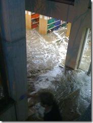 UWA Library
