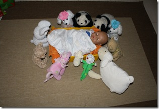 Baby in the manger
