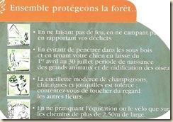 ensemble-protégeons_la_forêt