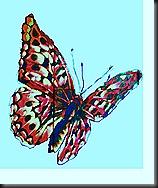 Graphitis et taggs 269 - Copie (2)