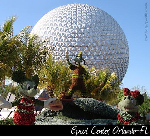 perola1 - Uma pérola em Walt Disney World
