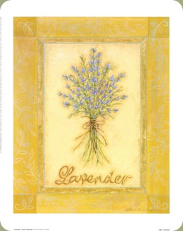 renee-jardine-lavender-herb-collection