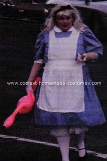 coolest-alice-in-wonderland-costume-8-21102195