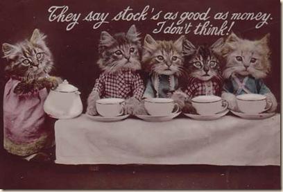 cat at tea party (2)