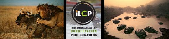 coluna zero, meio ambiente, melhores fotos, natureza, ilcp