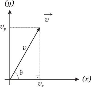 vetor graf ex2