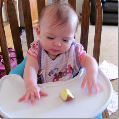 Elaine 20 Weeks Apple Wedge
