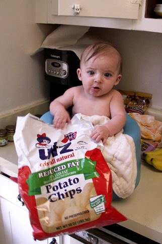 Elaine 21 Weeks Utz Addict