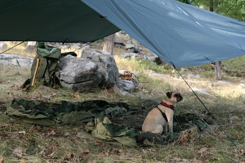 Along with that I use a DD 3m x 3m tarp. & Tent Vs Tarp | Bushcraft USA Forums