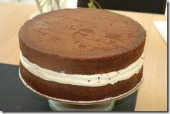 wedding cake info 075