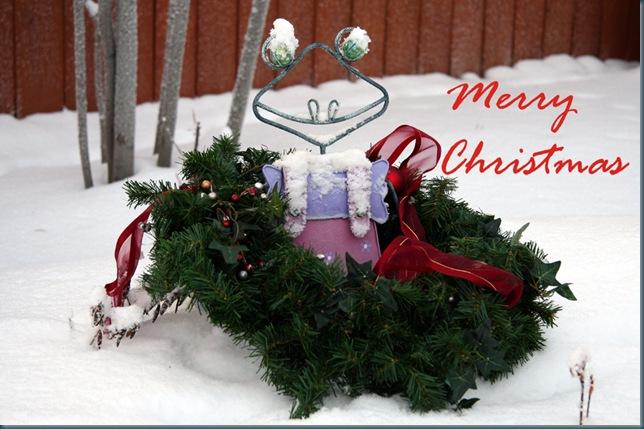 christmasfroggy