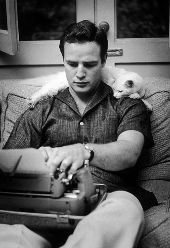 Marlon Brando celebrity and cat