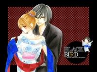 black03_l