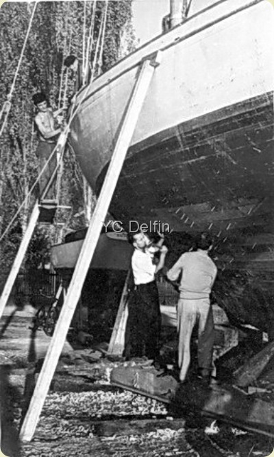 YC Delfin kalafatavanje ED