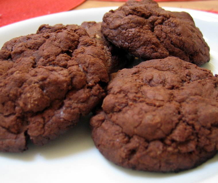 Chewy Chocolate Fudge Cookies | The Jersey Cook