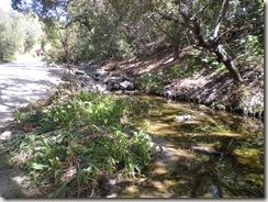 oak canyon hike 3