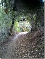 PCTR Malibu Creek single track 1a