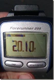 2010 run