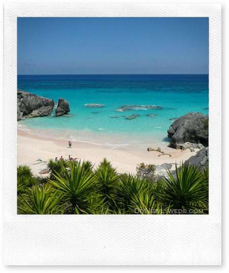 bermuda_beach