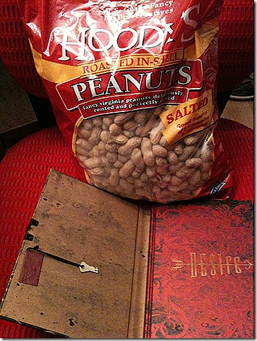 peanuts and journal 2