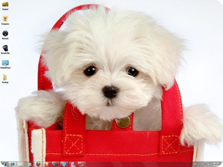 free cute puppies wallpapers. cute puppies wallpapers.