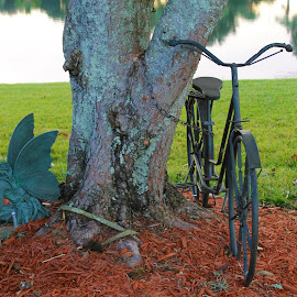 by Denise Dunkley Hall - Transportation Bicycles