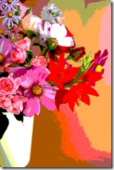 Mitty's flowers 14