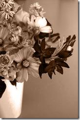 Mitty's flowers 3