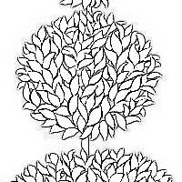 topiary2c.jpg