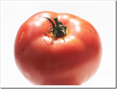 101008_big_tomato