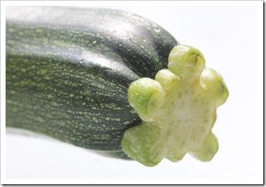 101008_zucchini