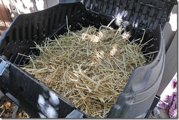 101123_straw_in_compost_tumbler