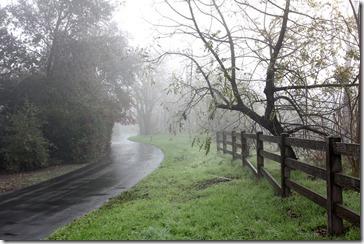 101205_fog_greenbelt1
